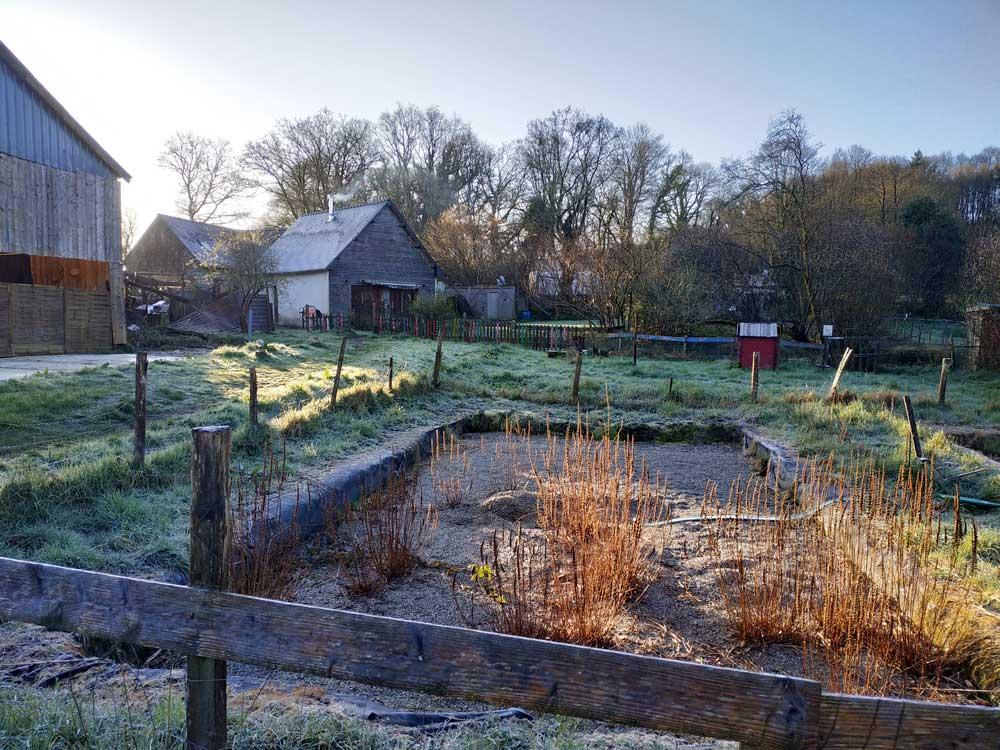 Photo prise au petit matin en Mars 2020 lors de notre 1ère visite au Bois du Barde.